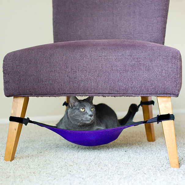 Mobiliario Pet Gato